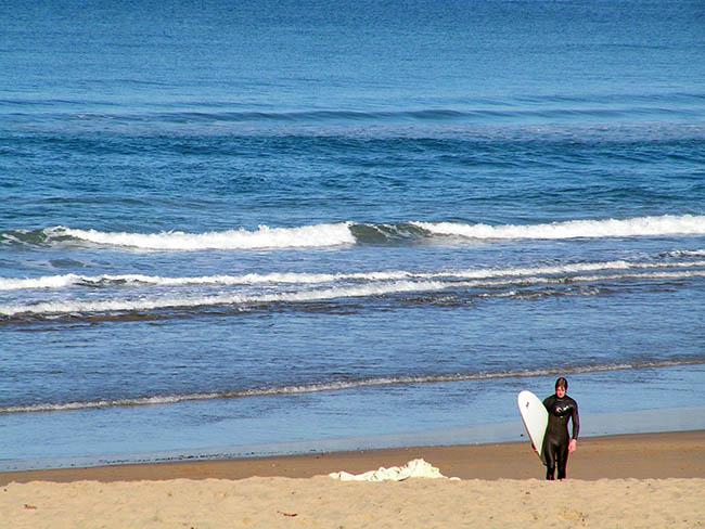 surf en donostia